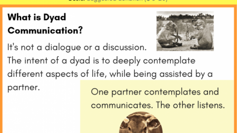 Dyad Communication Practice in Albuquerque – Sat 9 Feb 2019 – 10am