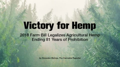 Hemp Industry page announcement
