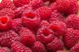 fruitFearRaspberries